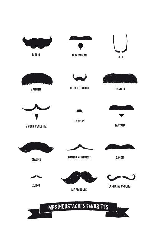 Zoom sur visuel des moustaches monochrome